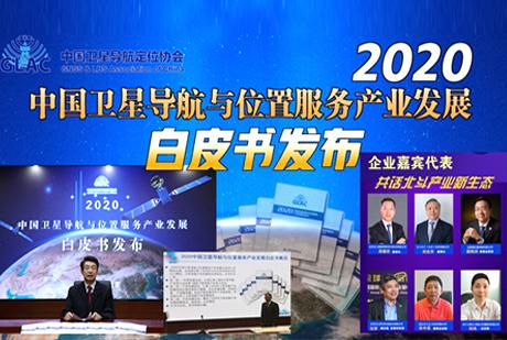 《2020中国卫星导航与位置服务产业